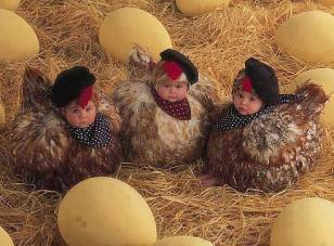 Kids lay eggs