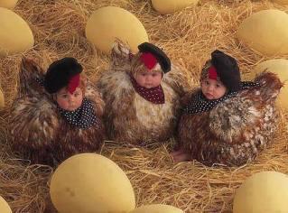 Kids lay eggs